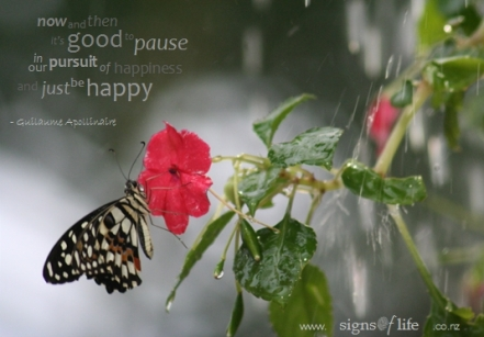 1229492136Butterfly_Words