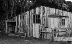 Shearing shed, Island Hill Run, Mason Bay