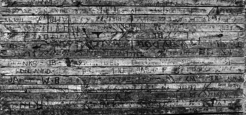 Picnic table graffiti, Ryan's Creek