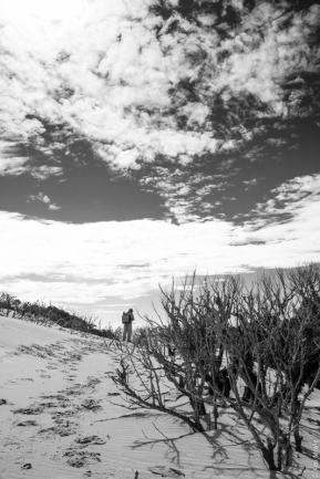 Marram grass spraying, Big Sand Pass, Mason Bay